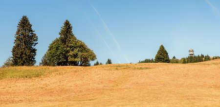 The Feldberg, on the highest mountain in Baden-Württemberg, Germany Zdjęcie Seryjne