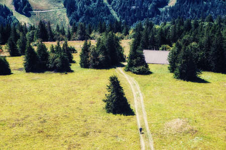 Black Forest, Germany: Natural park Feldbergsteig
