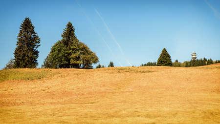 The Feldberg, on the highest mountain in Baden-W?rttemberg, Germany Zdjęcie Seryjne