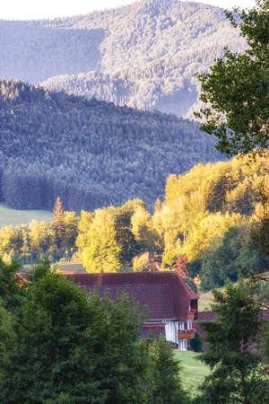 Rustic farm, woods and undulating hills and valleys make for an eye-soothing tour of the Black Forest region, southwest Germany Standard-Bild