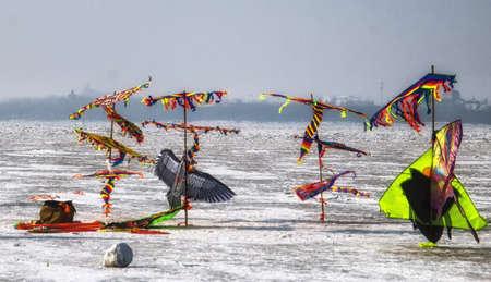 Colourful Chinese kites. Harbin, China. 版權商用圖片