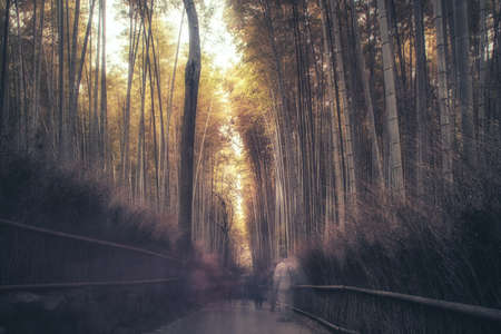 Path to bamboo forest with blurred tourists in Arashiyama, Kyoto