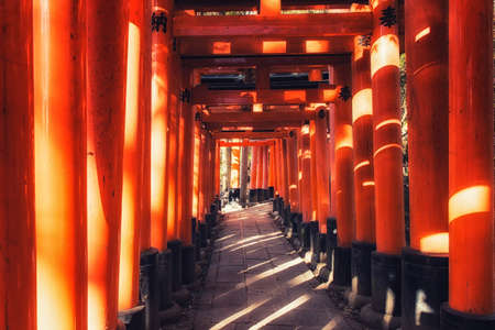 Fushimi inari temple in Kyoto Japan, home to thousands of red torii gates Фото со стока