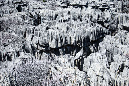 Curiously strange rock formations called Tsingy in the Park National Ankarana in Madagascar