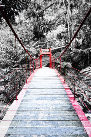 black and white forest with red bridge, Wulai, Taiwan. Stock Photo