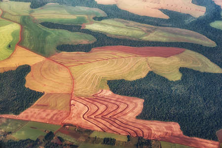 Farmland near Gualeguaychu, Entre Rios Province, Argentina, South America