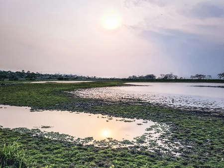 A serene landscape at Kaziranga National Park