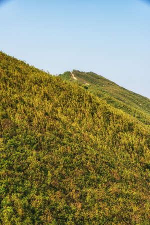 Dragon 's Back mountain trail, best urban hiking trail in Hong Kong