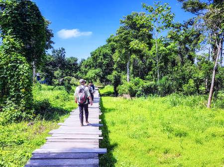Tourists crossing an Amazon boardwalk over marsh land. Peru, South America.