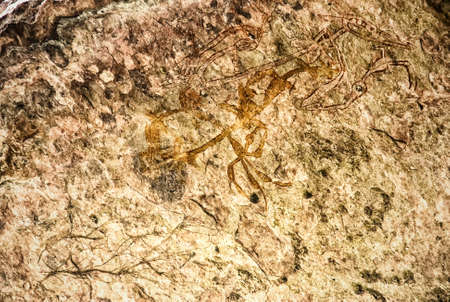 Australia, Northern Territory, Kakadu National Park