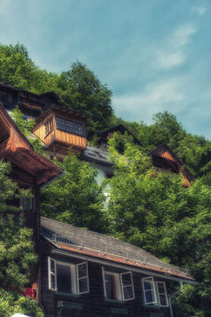 Traditional local house style build up on the hill surround by fresh natural green tree environment in Hallstatt Village Austria