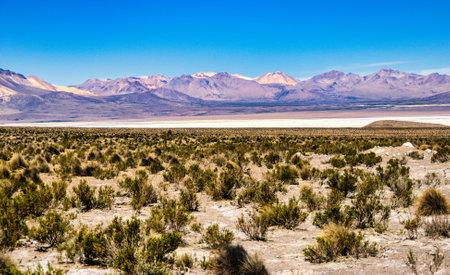 Salar de Talar and surrounding volcanoes, Atacama Desert, Chile