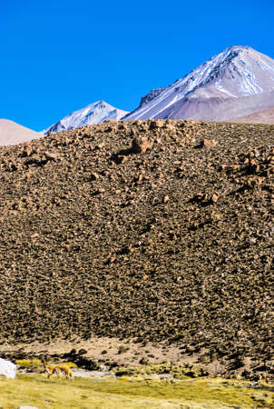 The landscape of northern Chile with the Andes Mountains and volcanoes with snow on the summit, Atacama Desert, Chile Фото со стока