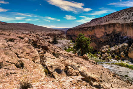 Large river canyon of the Rio Camarones running through the Atacama Desert in the Arica y Parinacota Region of northern Chile. Фото со стока