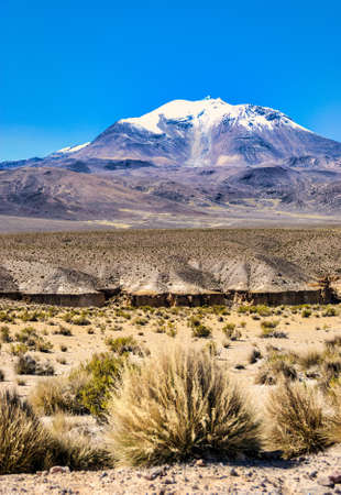 Volcano Guallatiri, Las Vicunas National Reserve, Chile, South America
