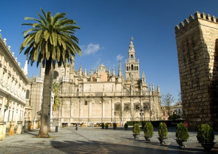 seville: View of the Giralda,cathedral of Seville Spain Stock Photo