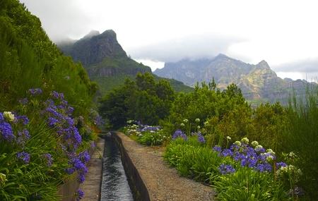 Levada of Madeira Portugal