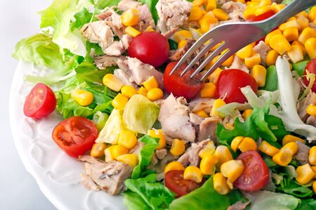 Chicken Salad  and tomato photo