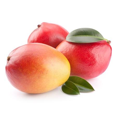 green mango: mango fruit isolated on white background