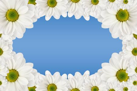 Flowers frame on a blue background photo