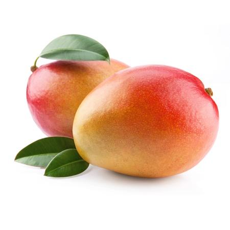 mango: owoców mango samodzielnie na biaÅ'ym tle Zdjęcie Seryjne