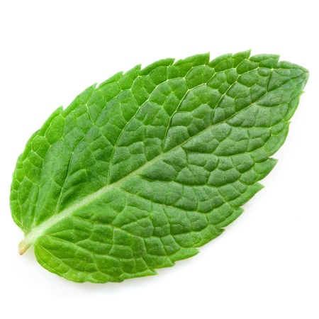 fresh mint leaves isolated on white background. Studio macro  Stock Photo