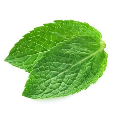 spearmint: fresh mint leaves isolated on white background. Studio macro  Stock Photo