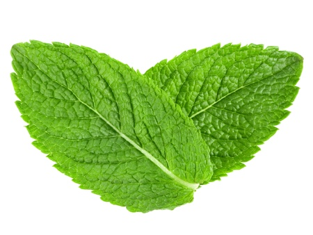 mint leaves: Two mint leaves