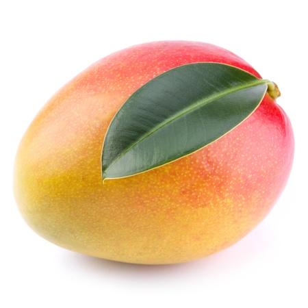 mango leaf: mango isolated on white background
