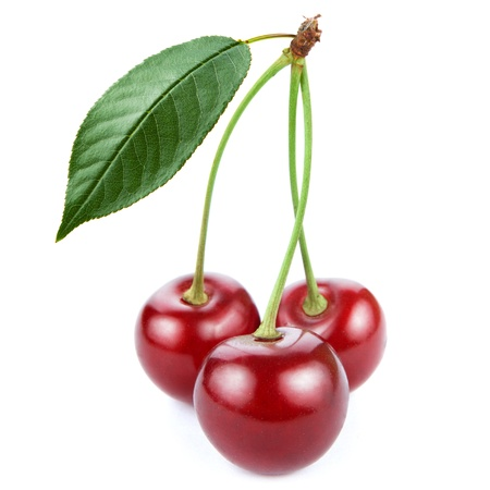 sour cherry: Cherry isolated on white background Stock Photo