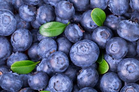 Freshly picked blueberries background