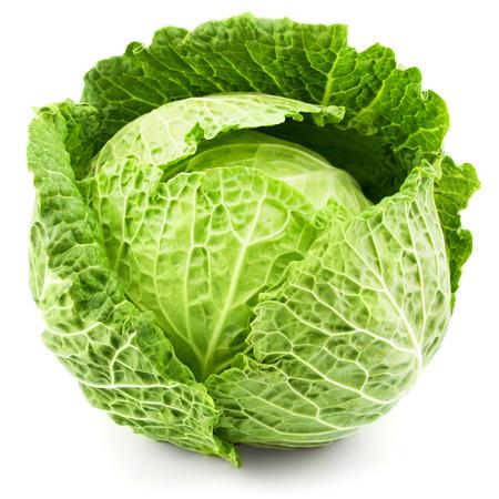 cabbage: repollo aislado en fondo blanco