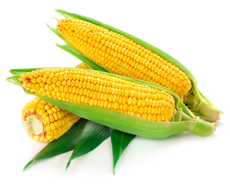 corn kernel: corn isolated Stock Photo