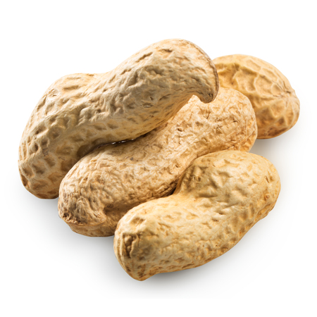 hard core: Peanuts Isolated on a white background.   Stock Photo