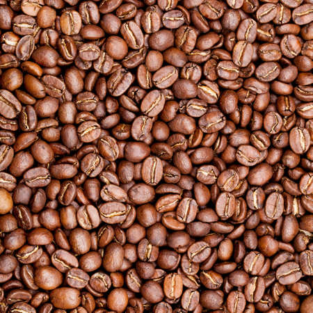 large bean: roasted coffee beans, can be used as a background
