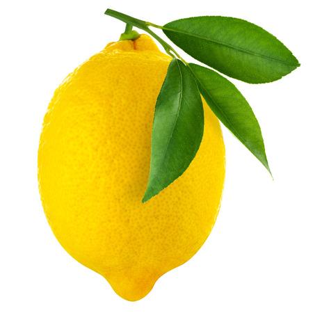 Zitronen isoliert auf weißem Hintergrund Standard-Bild - 33981976