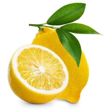 limonero: Limones aisladas sobre fondo blanco