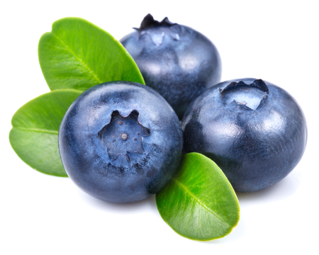 blueberries isolated Foto de archivo