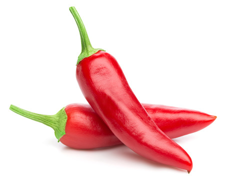 red chilli pepper plant: chili pepper isolated