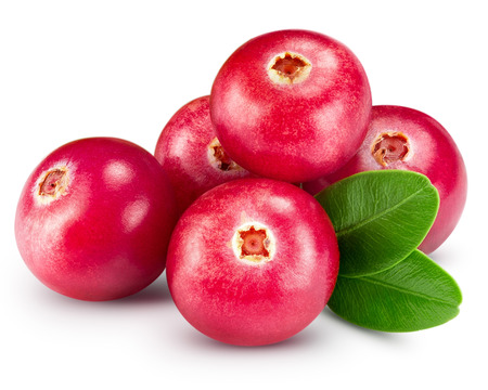 cranberries isolated on white Clipping Path