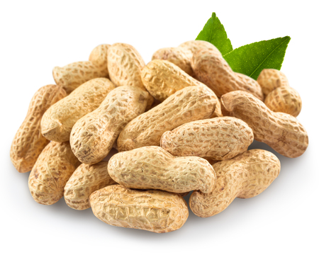 earth nut: peanut isolated on white background