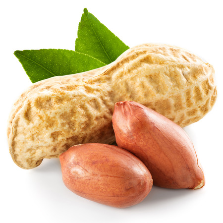 earth nut: Dried peanuts in closeup Stock Photo