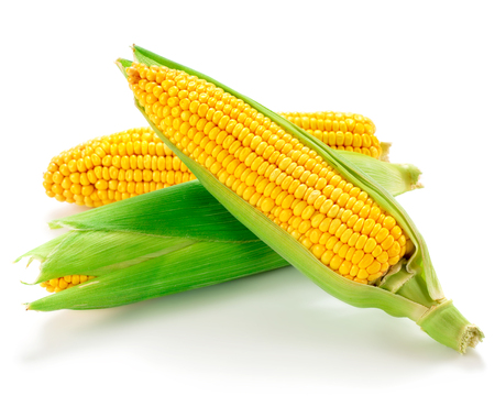 husks: corns isolated