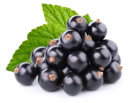 black currant: Black currant isolated on white background