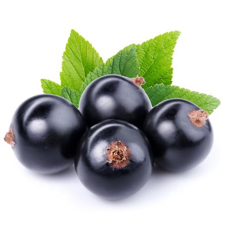 currant: Black currant