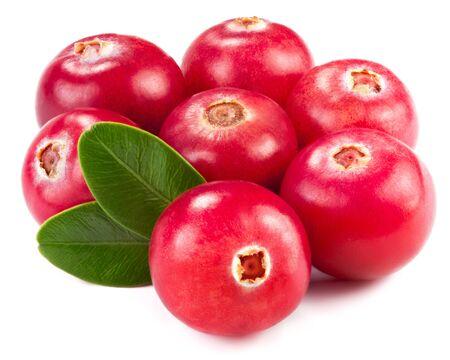 arandanos rojos: ar�ndanos aislado en blanco