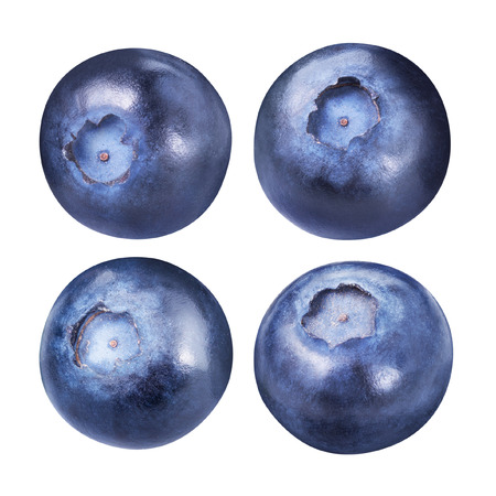 isolated: blueberries isolated Stock Photo