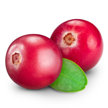 arandanos rojos: ar�ndanos aislados en blanco