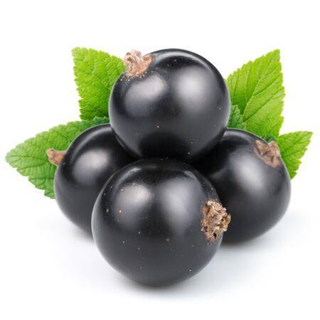 black berry: black currants Stock Photo