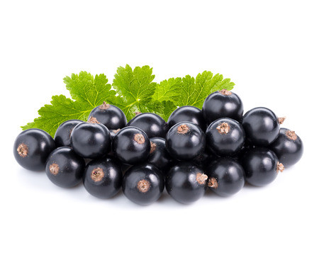 black currants: black currants Stock Photo